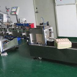 etichettatrice automatica scatola delle uova